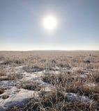 冬天在内蒙古 库存图片