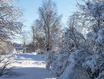 冬天风景在农村地形 免版税库存图片