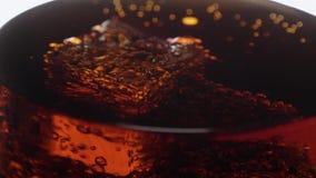 冰块宏观射击在一杯的在慢动作的可乐浮游物 股票视频