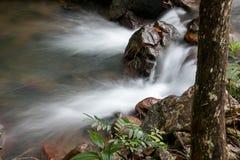 冲在小河下的水在巴西的Savannas 库存图片