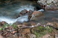 冲在小河下的水在巴西的Savannas 免版税库存图片