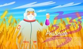 农夫喷洒的杀虫剂和化学制品,在麦田的治疗昆虫 防护套服的人与的面膜 皇族释放例证