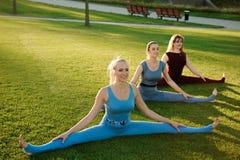 出席瑜伽的一个小组妇女外面在公园 库存图片