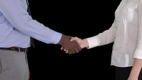 商人和女实业家握手,阿尔法通道的手 股票视频