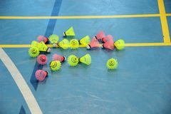 全部桃红色和黄色shuttlecocks在羽毛球场边缘 库存照片