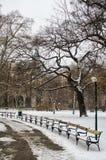 公园在用雪盖的城市 库存图片