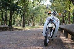 公园,庭院,自然,绿色,摩托车 图库摄影