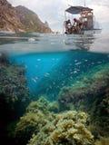 克里米亚半岛水下的风景 库存图片