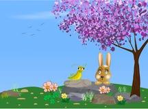 兔子和蚂蚱例证 免版税图库摄影