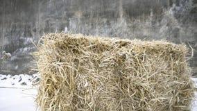 Ściśnięty haystack footage Rectangel naciskał haystack na tle szare ściany i śnieg Haystack w śniegu, karmi zdjęcie royalty free