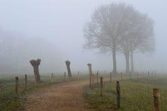 Ścieżka w mgle obraz stock