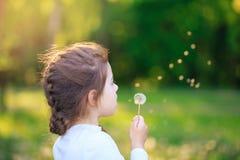 Śliczna mała dziewczynka z dandelion kwiatem jest uśmiechnięta w wiosna parku Szczęśliwy śliczny dzieciak ma zabawę przy zmierzch obrazy royalty free