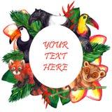 Ślicznej akwareli tropikalni zwierzęta - owal rama ilustracji