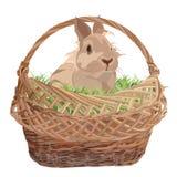Śliczny dekoracyjny królik w łozinowym koszu, wektorowa płaska ilustracja ilustracja wektor