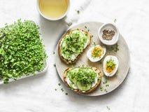 Śniadanie, przekąska, śniadanio-lunch - kremowy ser, ogórek, mikro zielenieje kanapki, gotowanego jajko i zielonej herbaty na lek zdjęcie royalty free