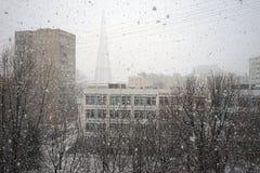 Śnieżna burza zdjęcia royalty free