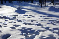 Śniegów odciski stopi w śniegu i dryfy słoneczny dzień tło płatków śniegu biały niebieska zima zdjęcia stock