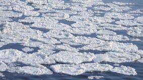 Śniegu pławik na powierzchni rzeka zbiory wideo