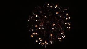 Świąteczni pojedynczy fajerwerki w nocnym niebie zbiory