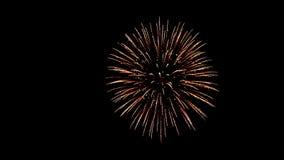 Świąteczni pojedynczy fajerwerki w nocnym niebie zdjęcie wideo