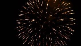 Świąteczni pojedynczy fajerwerki w nocnym niebie zbiory wideo