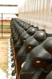 Świątynia Mahiyanganaya w Sri Lanka zdjęcie stock