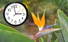 Światła dziennego oszczędzania czas DST Ścienny zegar iść zima czas Zwrota czas naprzód obraz stock