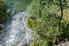 Światło, cień i kolory, Magiczny Plitvice park narodowy zdjęcie royalty free