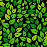 Świeża zieleń opuszcza na czarnym wiosna sezonu bezszwowym wzorze, wektor royalty ilustracja
