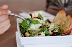 Świeża zielona szpinak sałatka z bekonem, crouton i serem crispy, zdjęcia stock