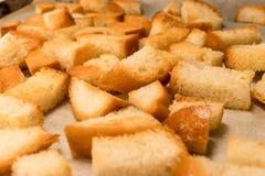 Świeży smażący &-x28; baked&-x29; crunchy crispy złoci croutons &-x28; tradycyjna przekąska jak cracker&-x29; od chleba zdjęcia stock