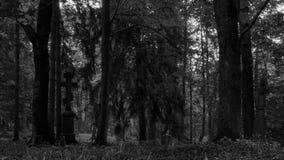 Åšwierzowa Ruska village non-existent. A cemetery. royalty free stock images