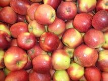 Świezi dojrzali czerwoni jabłka wypiętrzali w stosie fotografia stock