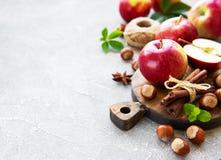 Świezi jabłka, hazelnuts i cynamon, obraz royalty free