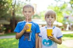 喝从纸杯的两个男孩可可粉有秸杆的在公园 库存照片