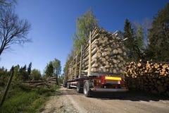 Åka lastbil med timmer Royaltyfri Bild