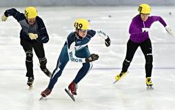Åka skridskor för hastighet Arkivbilder
