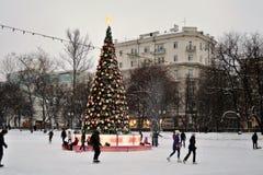 Åka skridskor isbanan i Moskva Royaltyfri Bild