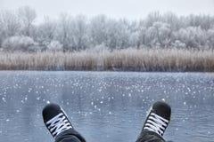 Åka skridskor på en sjö Arkivbild