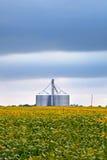 Åkerbruk bransch med sojabönafält och silo på molnig dag Arkivbild