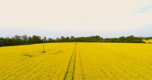 Åkerbruk flyg- sikt - GMO bakgrund arkivfilmer