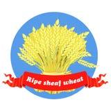 Åkerbruk kornkärve av vete stock illustrationer