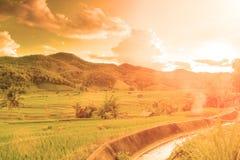 Åkerbruk kornlantgård och cannel i varm signal royaltyfri bild