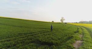 Åkerbruk manlig bonde som går på spår över jordbruks- fält, medan genom att använda den digitala minnestavlan stock video