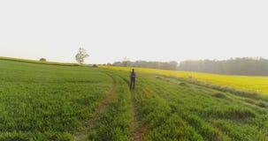 Åkerbruk manlig bonde som går på spår över jordbruks- fält, medan genom att använda den digitala minnestavlan arkivfilmer