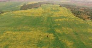 Åkerbruk traktor som besprutar fältet för sommarskördCanola Surrlängd i fot räknat stock video