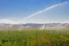 Åkerbruk vattensprej arkivfoton