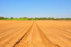 åkerbruka fält Arkivfoton