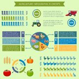 Åkerbruka infographic beståndsdelar Royaltyfri Bild