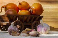 åkerbruka produktgrönsaker för ny marknad Royaltyfri Foto